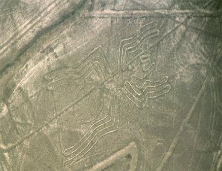 Nazca-spider-wikipediafile-Nazca-lineas-arana-thumbnail