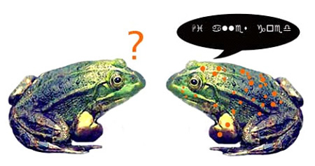 huhh-froggy-thumbnail-nquist