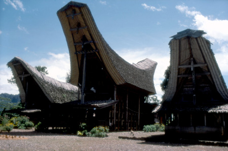 wikimediafile-toraja-house-thumbnail